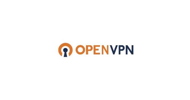 Cara Menggunakan OpenVPN di HP Smartphone