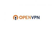 Cara Menggunakan OpenVPN di PC/Komputer