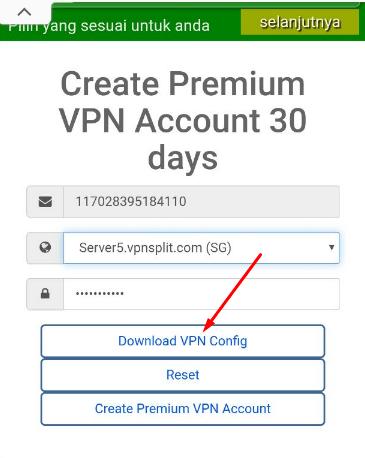 Config OpenVPN 30 hari