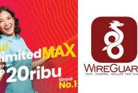 Cara Ubah Kuota Unlimited MAX Telkomsel Jadi Reguler Menggunakan Wireguard