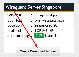 Wireguard Server Singapura