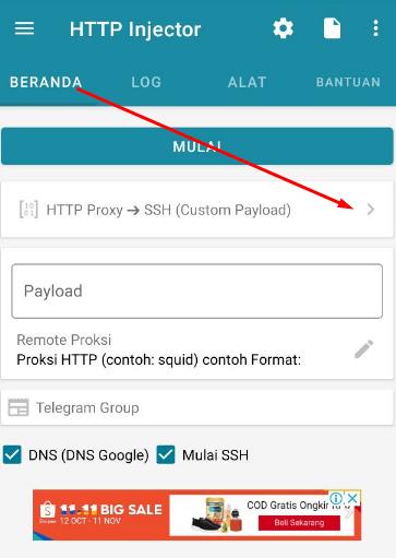 Cara Menggunakan V2Ray di HTTP Injector