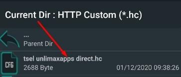 Import Config HTTP Custom 234