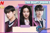 Jadwal Tayang True Beauty Episode 1 – 16 di tvN Indonesia