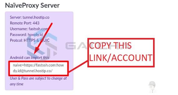 Cara Menggunakan Naiveproxy di Android